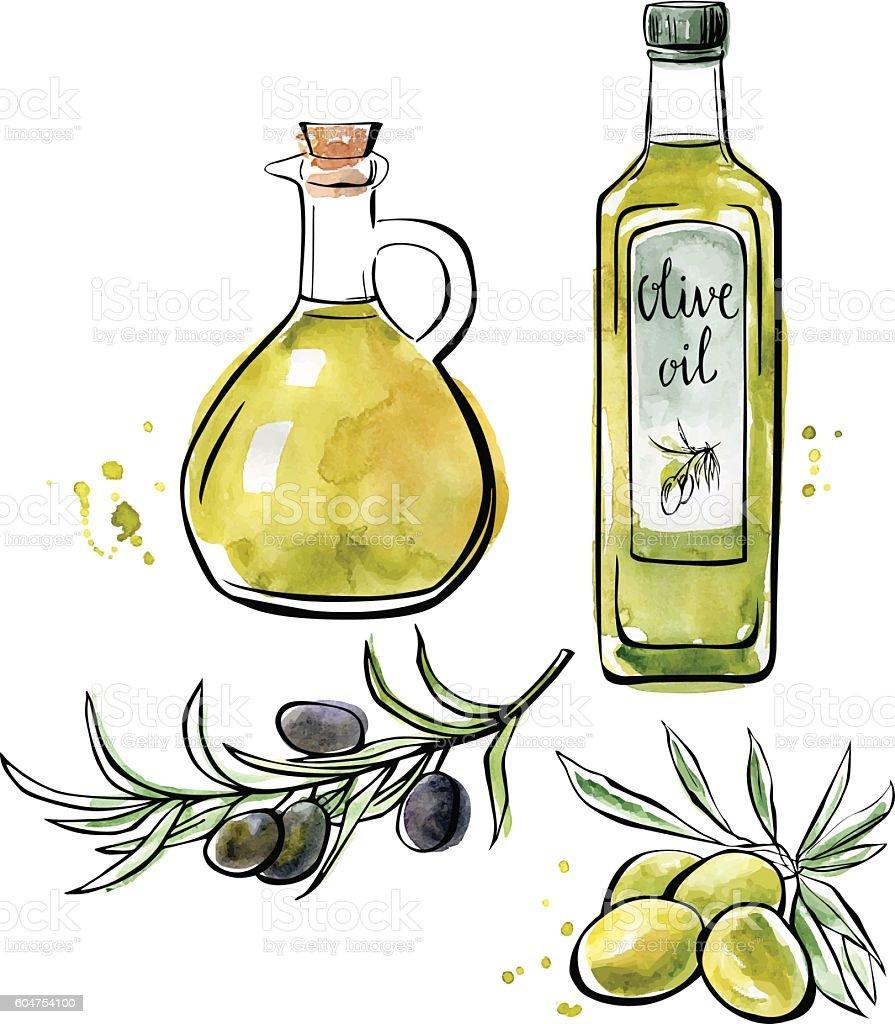 Vector watercolor illustration of olive oil - ilustração de arte vetorial