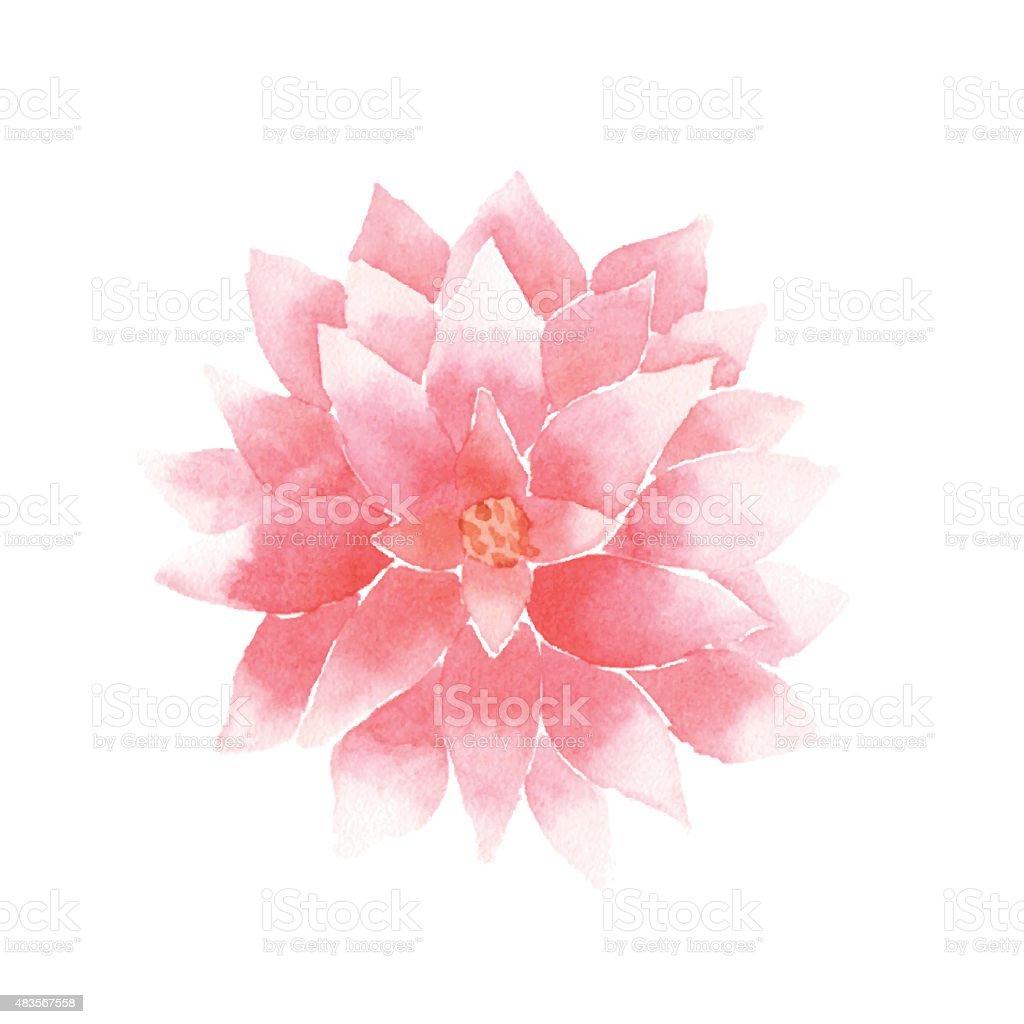 Vector Watercolor Lotus Flower Pink Stock Vector Art More Images