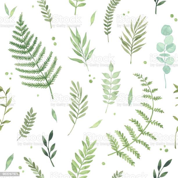 Vector watercolor seamless pattern spring is coming botanical with vector id953267974?b=1&k=6&m=953267974&s=612x612&h=x7mg5ke8seaszfnfy09igktpk ylgx75leglkocxxfy=