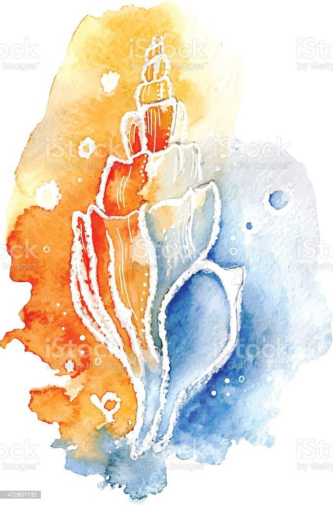 vector watercolor seashell. vector art illustration