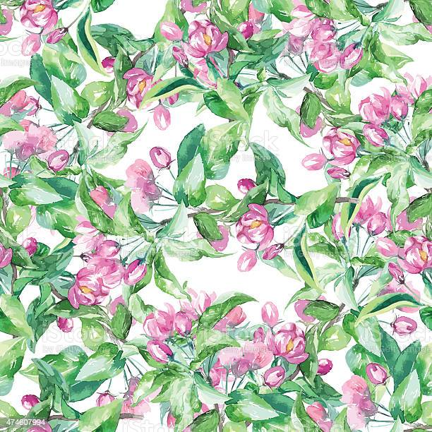 Vector watercolor spring floral pattern with blossom apple tree vector id474607994?b=1&k=6&m=474607994&s=612x612&h=4zsh3z tzya32kujkh58p7hong98zsvipm4nlr61zri=