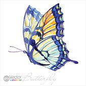 istock Vector Watercolor Swallowtail Butterfly 469257442