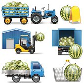 Vector watermelon shipping icons with truck, forklift, tractor, supermarket basket, storage and other, isolated on white background