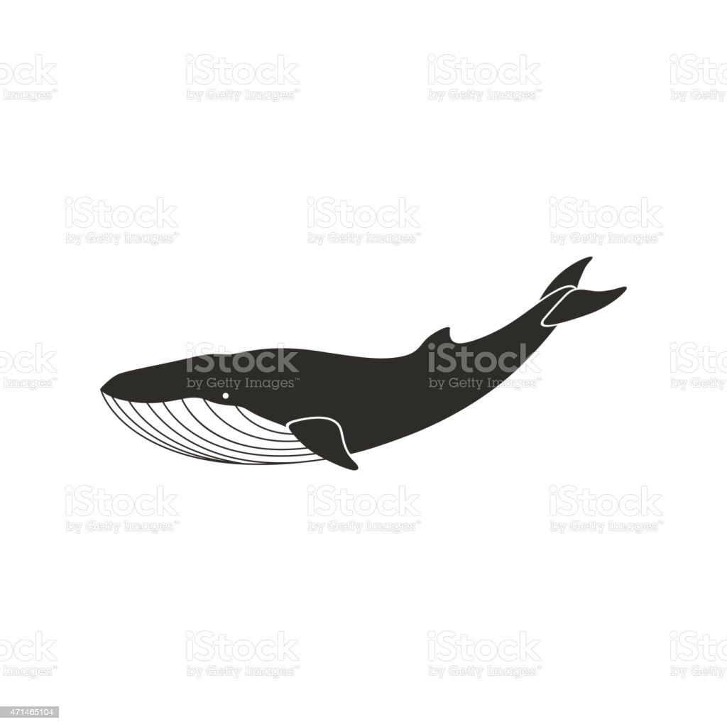 Vector Whale vector art illustration