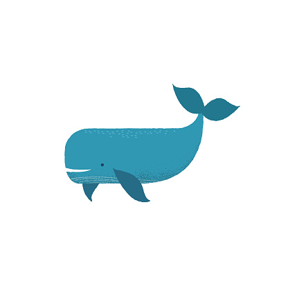 Vector whale