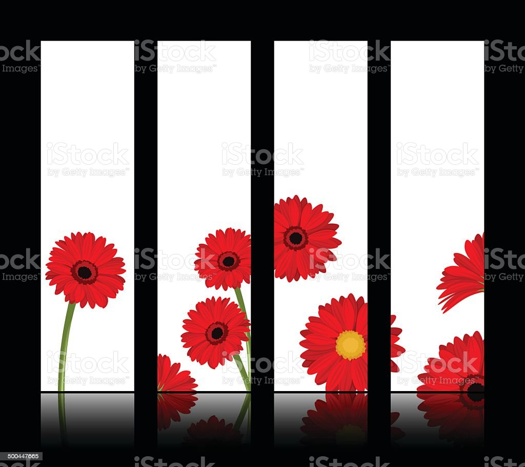 Vector white banners with red gerbera flowers. Eps-10. royalty-free stock vector art