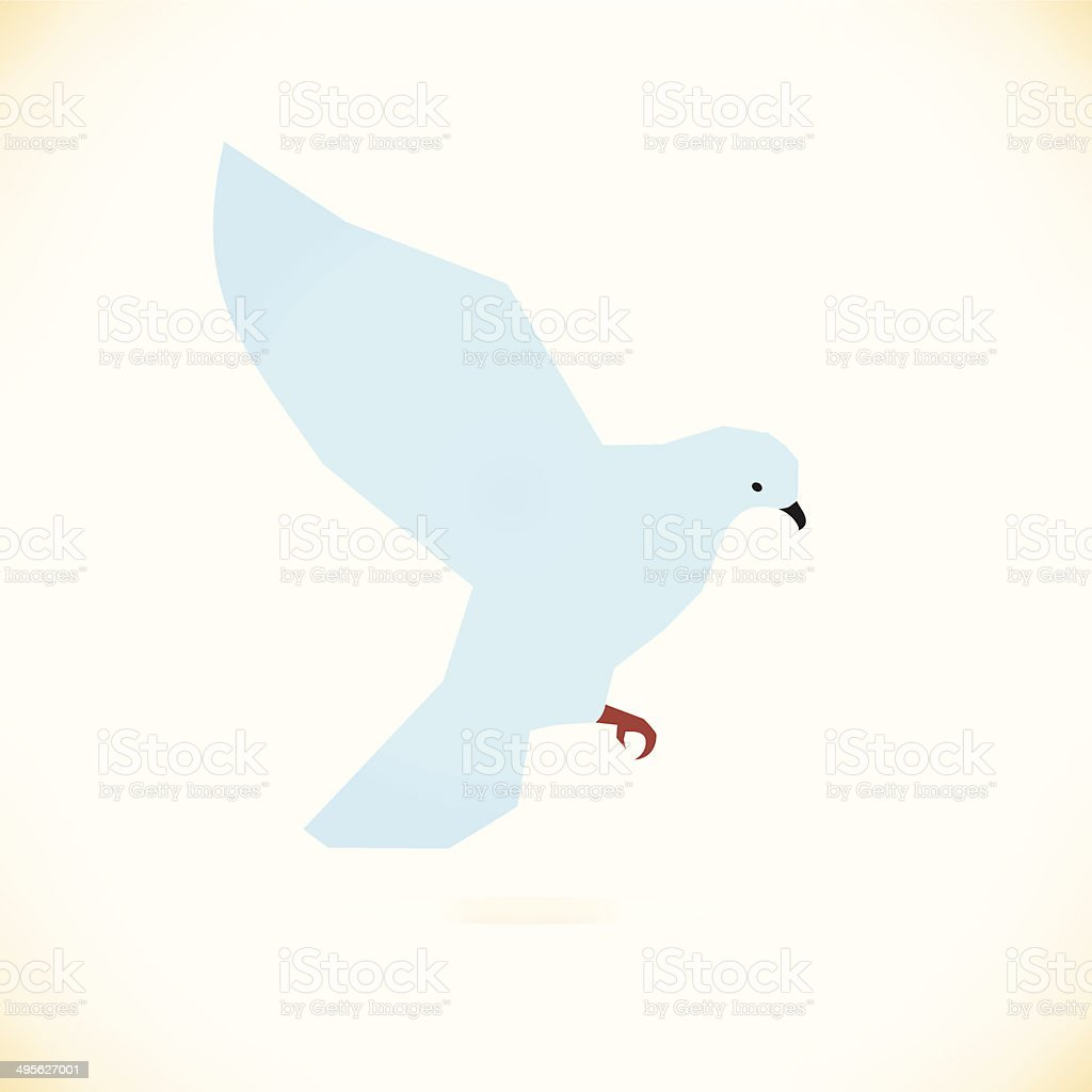 Vector white bird  Pigeon, dove vector art illustration