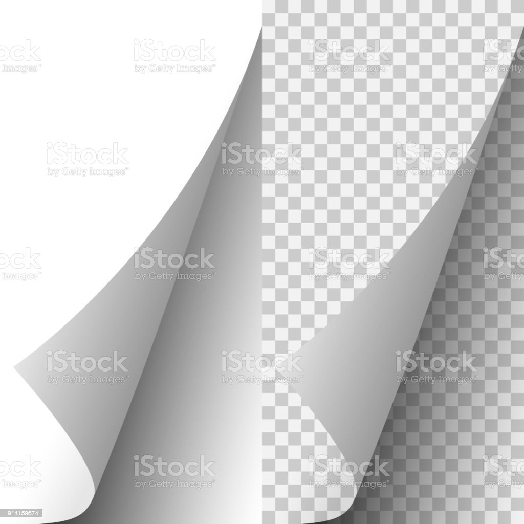 Vector white realistic paper page corner vector art illustration