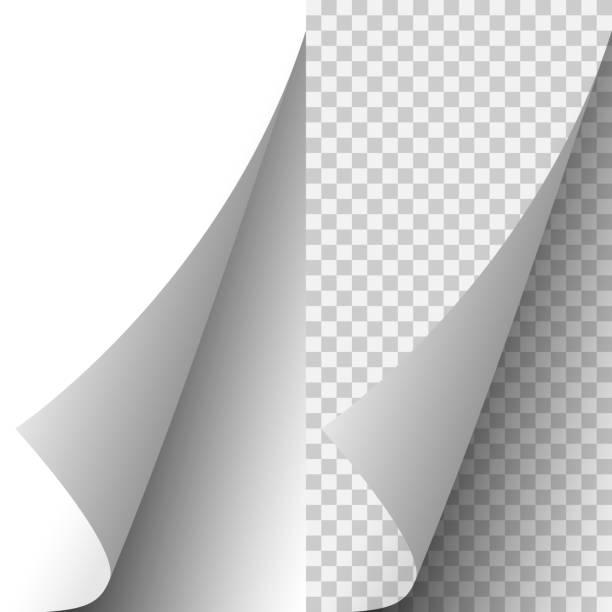 illustrazioni stock, clip art, cartoni animati e icone di tendenza di vector white realistic paper page corner - rotolo