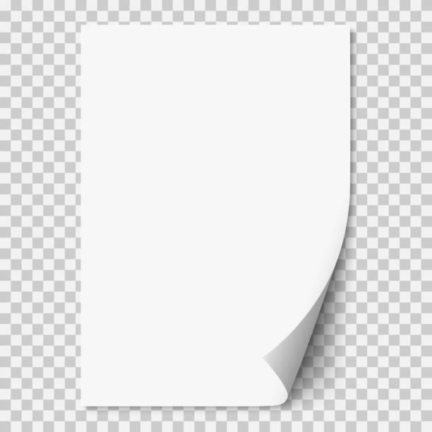 векторная белая реалистичная бумажная страница с завитым углом. - письмо документ stock illustrations