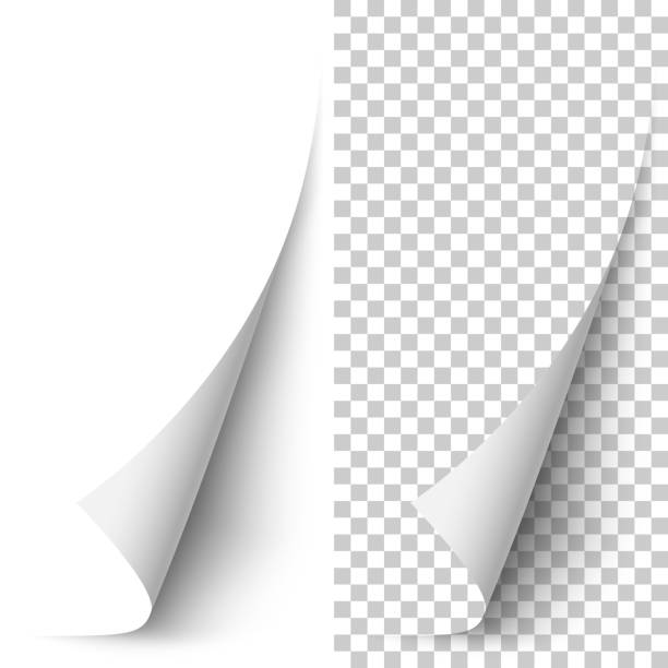 Vector white vertical paper corner rolled up Vector white vertical paper corner rolled up with soft shadow on white and transparent background. 3D page corner curled. Realistic design element. book backgrounds stock illustrations