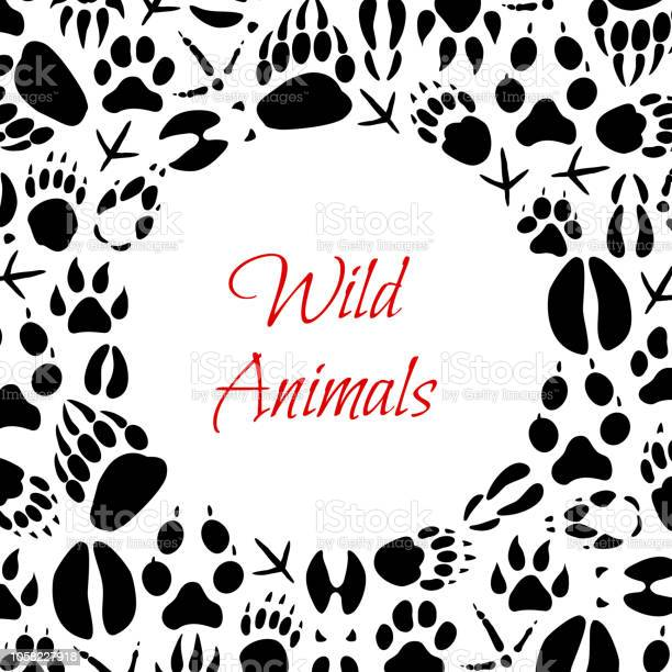 Vector wild animals footprints poster vector id1058227918?b=1&k=6&m=1058227918&s=612x612&h= fwmn t sq2n7eup7wwn7zofgbcp0zqxj1uvv8tco5k=