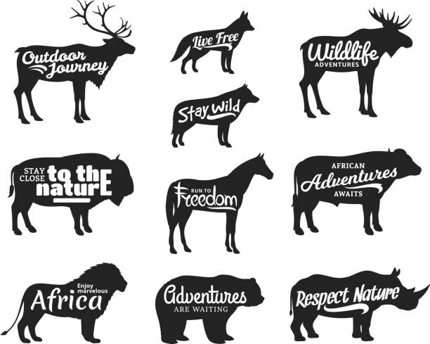 Vector wild animals silhouettes. Wild life adventures icons Vector wild animals silhouettes. Wild life adventures icons for tourism organizations, outdoor journey events and camping leisure elk stock illustrations