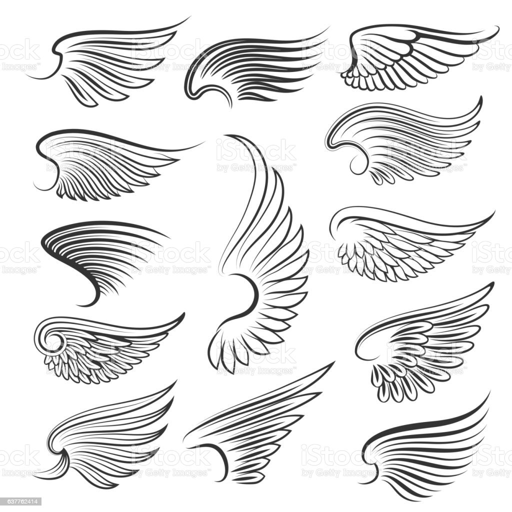 Vector wings isolated on white background vector art illustration