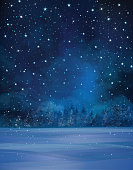 Winter night scene, starry sky, snow and forest background.