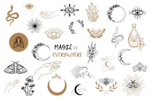 Vector witch magic design elements set. Hand drawn, doodle, sketch magician collection. Witchcraft symbols. Perfect for tattoo, textile, cards, mystery Vector witch magic design elements set. Hand drawn, doodle, sketch magician collection. Witchcraft symbols. Perfect for tattoo, textile, cards, mystery snakes tattoos stock illustrations