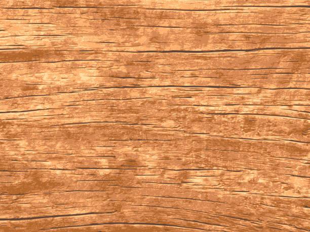tekstura drewna wektorowego dla tła - drewno tworzywo stock illustrations