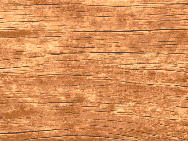 vector wood texture for background - wood texture stock illustrations