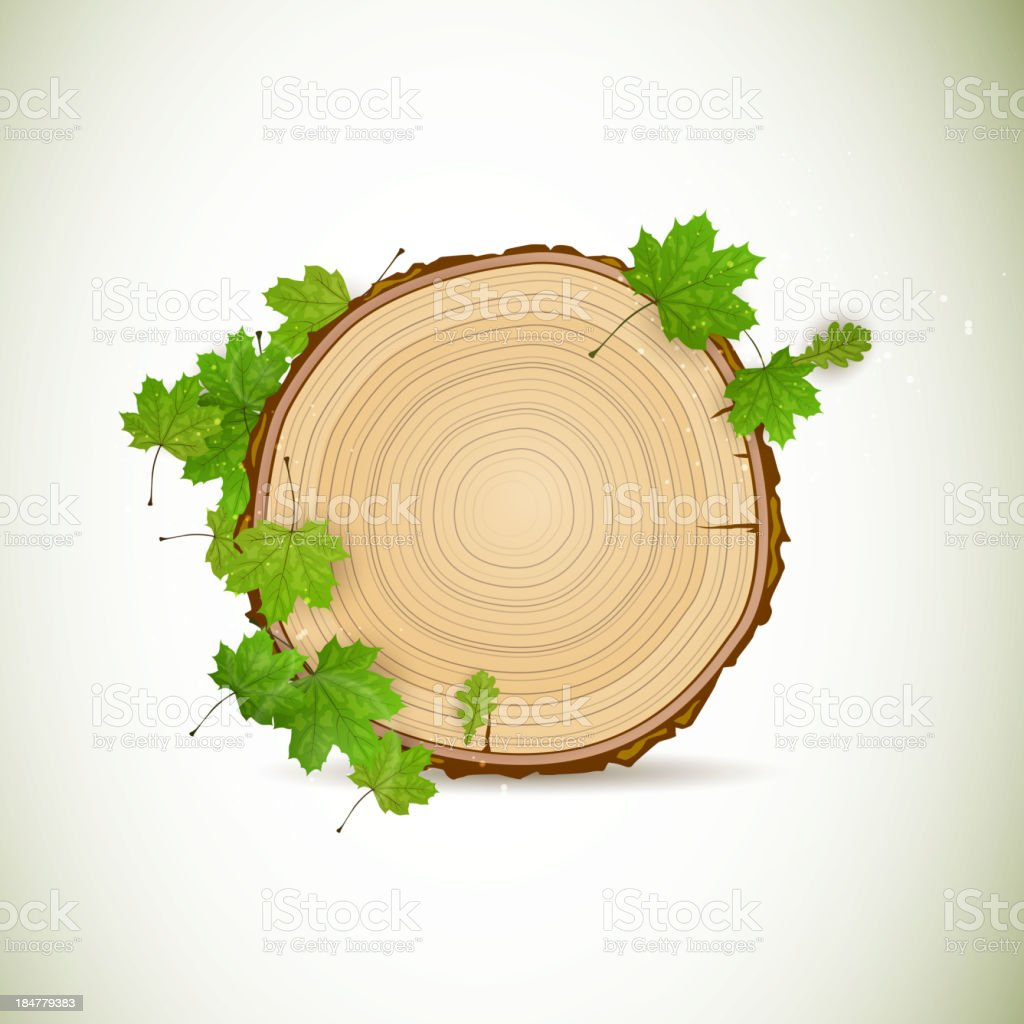 Vector Wooden Board with Leaves vector art illustration