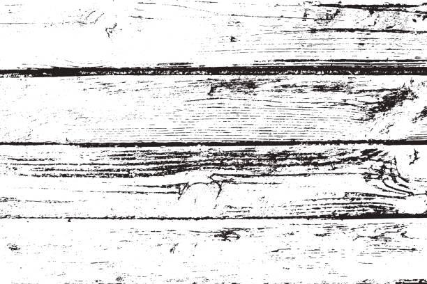 ilustrações, clipart, desenhos animados e ícones de vetor de textura de madeira - textura de madeira