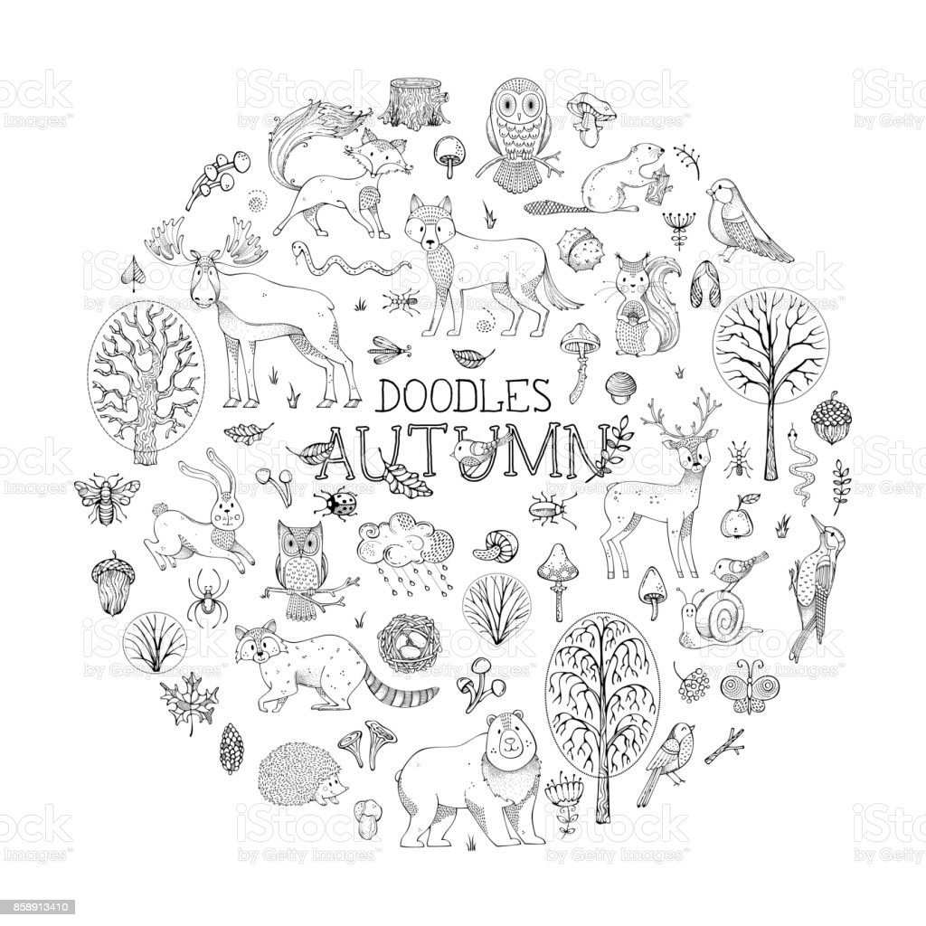 Vector woodland set of doodles animals and plants. vector art illustration