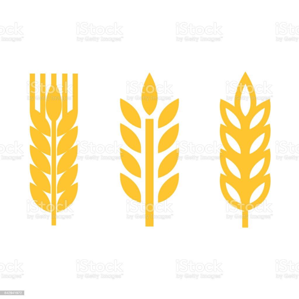 Vector yellow wheat ear spica icons set vector art illustration