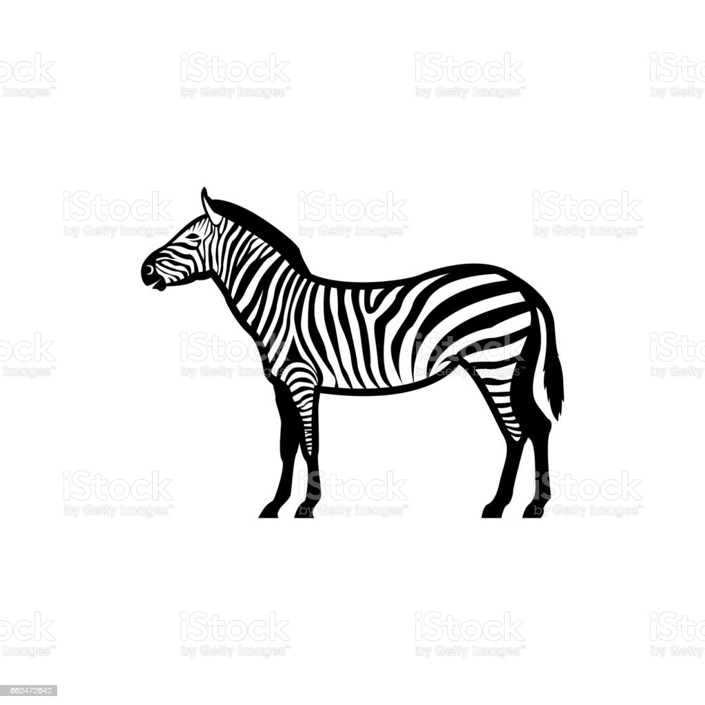 Vector zebra silhouette view side for retro s emblems badges vector zebra silhouette view side for retro s emblems badges labels template vintage pronofoot35fo Gallery