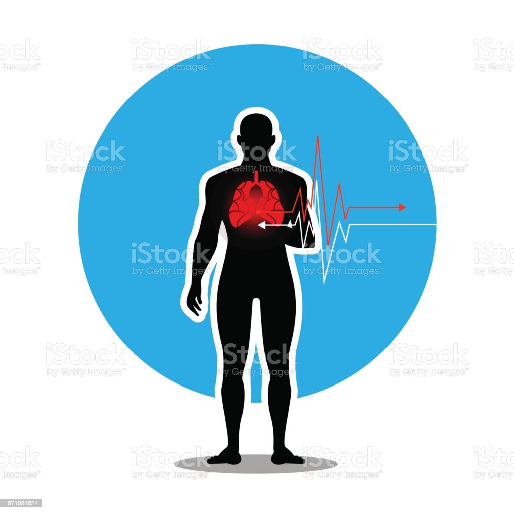 vector-Human silhouette and abstract lung, cardiogram Isolated on white vector art illustration