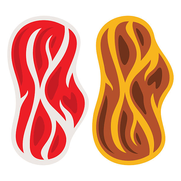 Vectror Raw and cooked piece of Meat. Flat style colorful vector art illustration