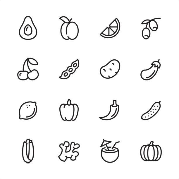 Vegan Food - outline icon set 16 line black on white icons / Set #60 Pixel Perfect Principle - all the icons are designed in 48x48pх square, outline stroke 2px.  First row of outline icons contains:  Avocado, Plum (Apricot), Orange Slice, Olive Branch;  Second row contains:  Cherry, Green Pea, Potato, Eggplant;  Third row contains:  Lemon, Bell Pepper, Chili Pepper, Cucumber;   Fourth row contains:  Celery, Ginger, Coconut Cocktail, Pumpkin. avocado stock illustrations