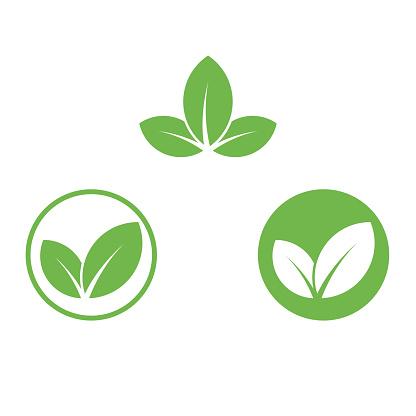 Vegan icon green leaf label template for vegan or vegetarian food package design. Isolated green leaf icon for vegetarian bio nutrition and healthy diet or vegan restaurant menu symbols set