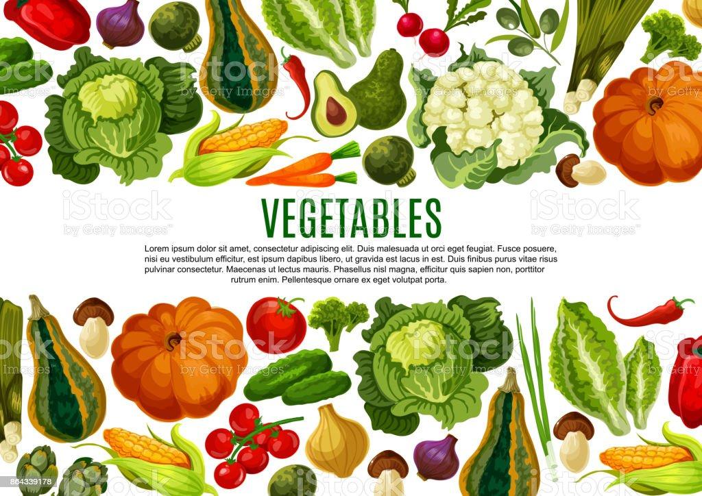 Vegetales y setas frontera diseño banner - ilustración de arte vectorial