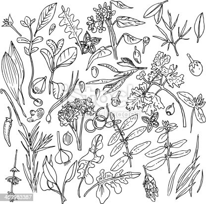 Vector Hand-Drawn Illustration of Vegetable Background in Black&White style (eps 8).