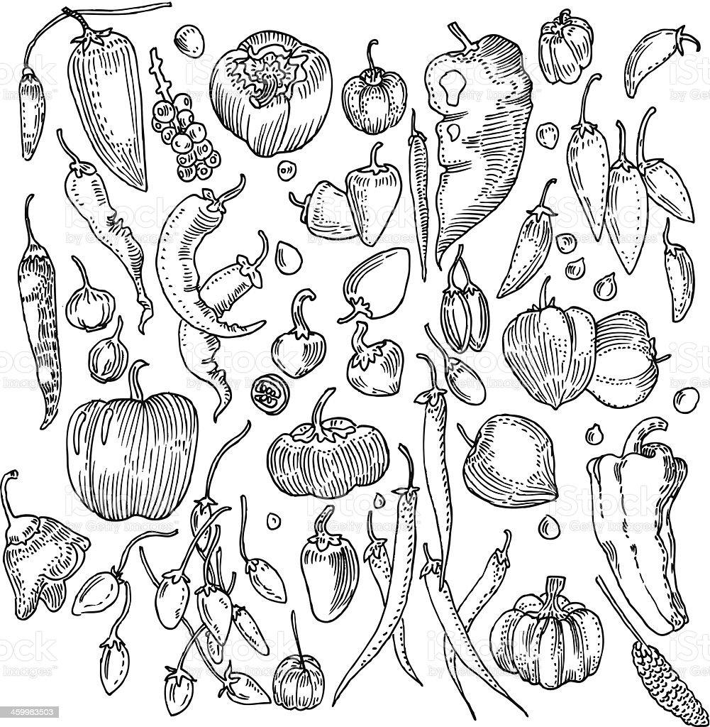 Vegetable Background vector art illustration