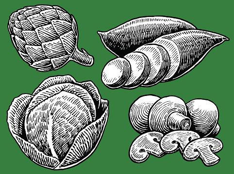 Vegetable - Cabbage, Mushrooms, Yam, Artichoke