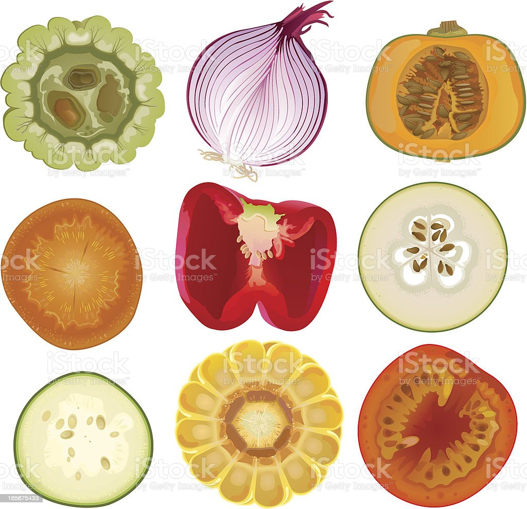 Vegetable Core vector art illustration