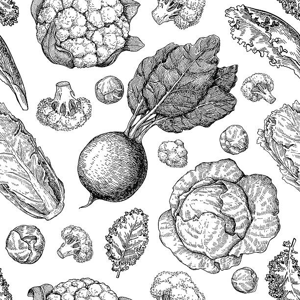Vegetable drawing seamless vector pattern. Farm market products. vector art illustration