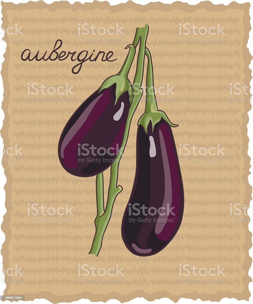 vegetable eggplant vector art illustration