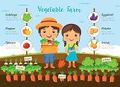 Vegetable farm infographic
