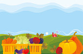 Vegetable garden. Summer Farmer's Market. Vector illustration.