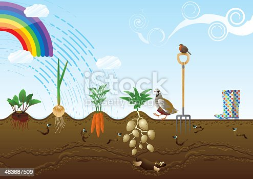 Vegetable Garden Allotment Landscape Stock Vector Art