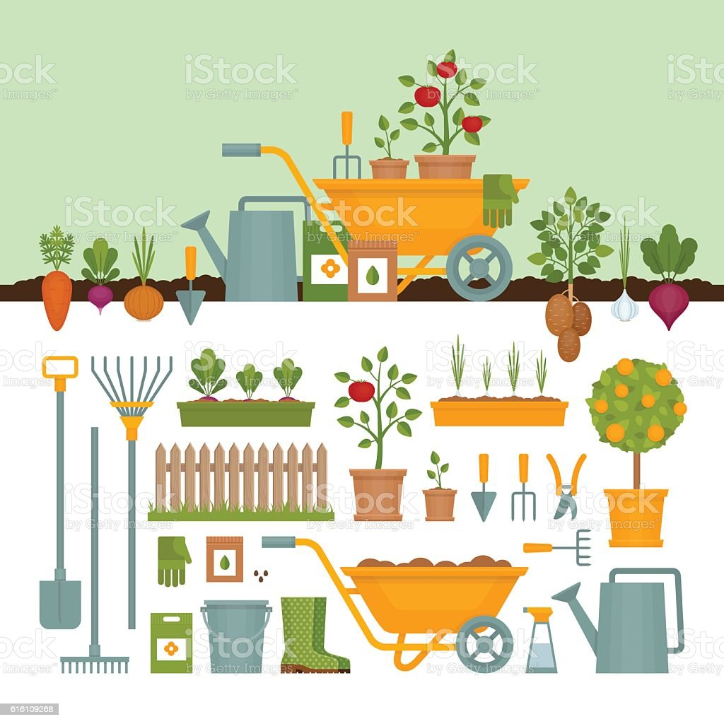 Vegetable garden. Garden tools. Banner with vegetable garden. vector art illustration