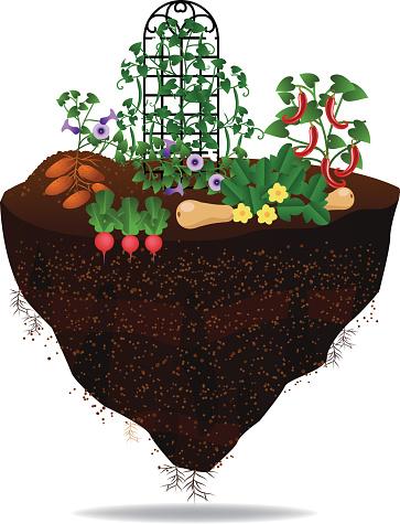 Vegetable garden on floating chunk of earth