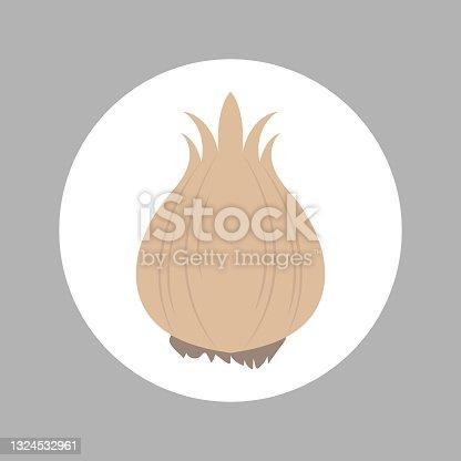 istock Vegetable, garlic icon, vector graphics 1324532961