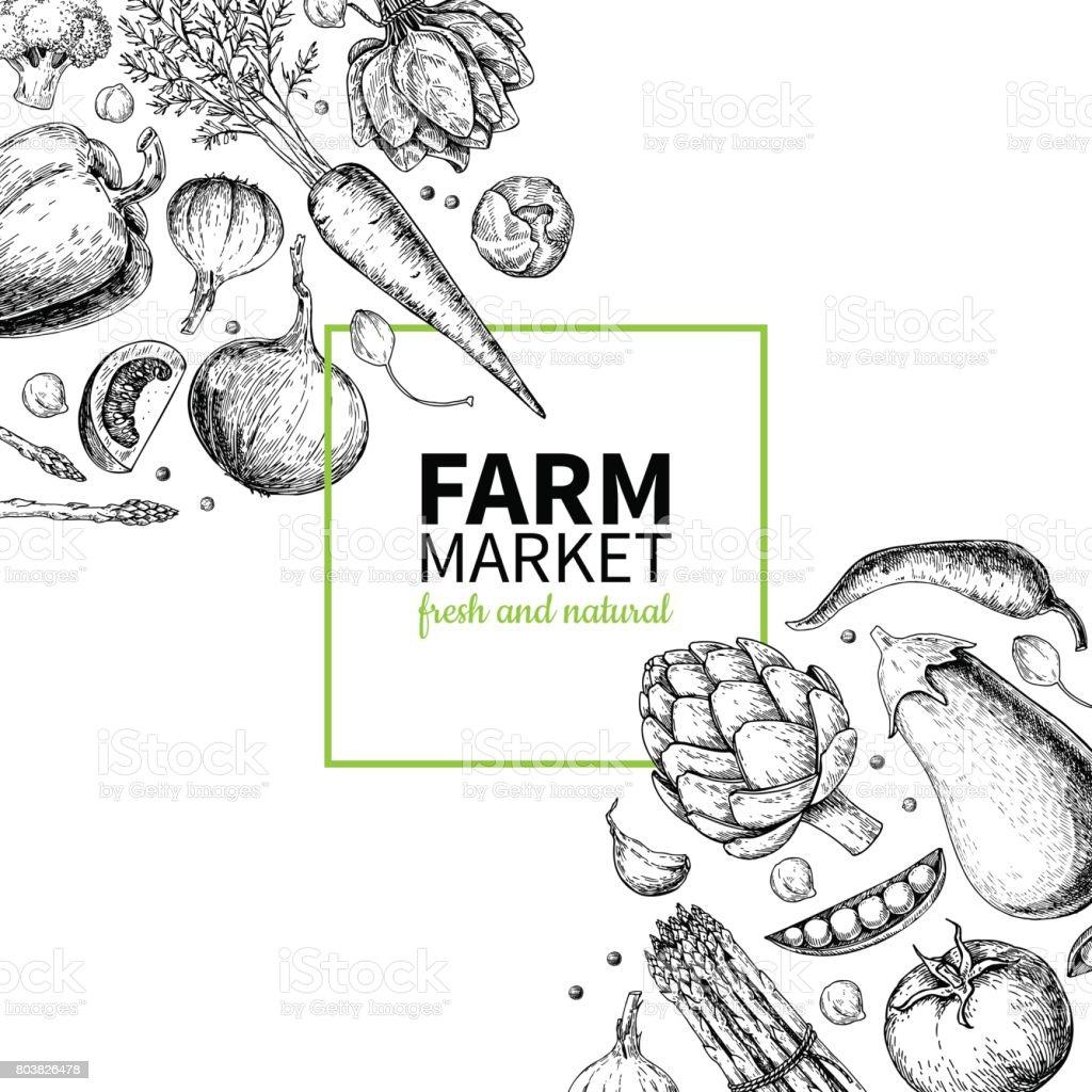 Vegetable hand drawn vintage vector frame illustration. Farm Market poster. Vegetarian set of organic products. vector art illustration