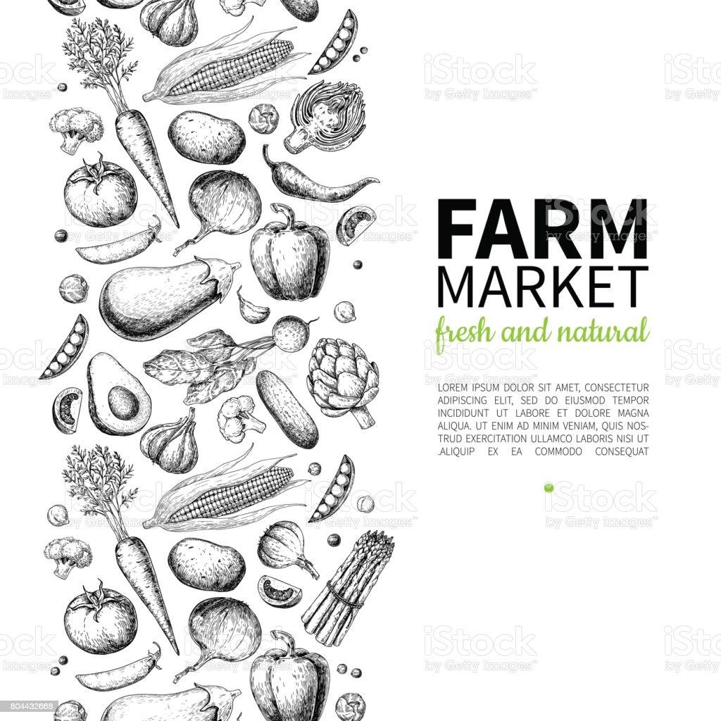 야채 손으로 그린 빈티지 벡터 프레임 그림입니다. 농장 시장 포스터입니다. 채식은 유기농 제품의 설정. royalty-free 야채 손으로 그린 빈티지 벡터 프레임 그림입니다 농장 시장 포스터입니다 채식은 유기농 제품의 설정 0명에 대한 스톡 벡터 아트 및 기타 이미지