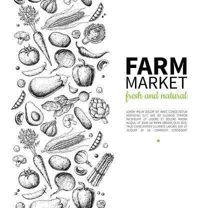 Vegetable hand drawn vintage vector frame illustration. Farm Market poster. Vegetarian set of organic products.