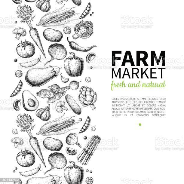 Vegetable hand drawn vintage vector frame illustration farm market vector id804432668?b=1&k=6&m=804432668&s=612x612&h= cpfsfqpbronnpfepl3c229nqiv7olkywvqjo6hvo q=
