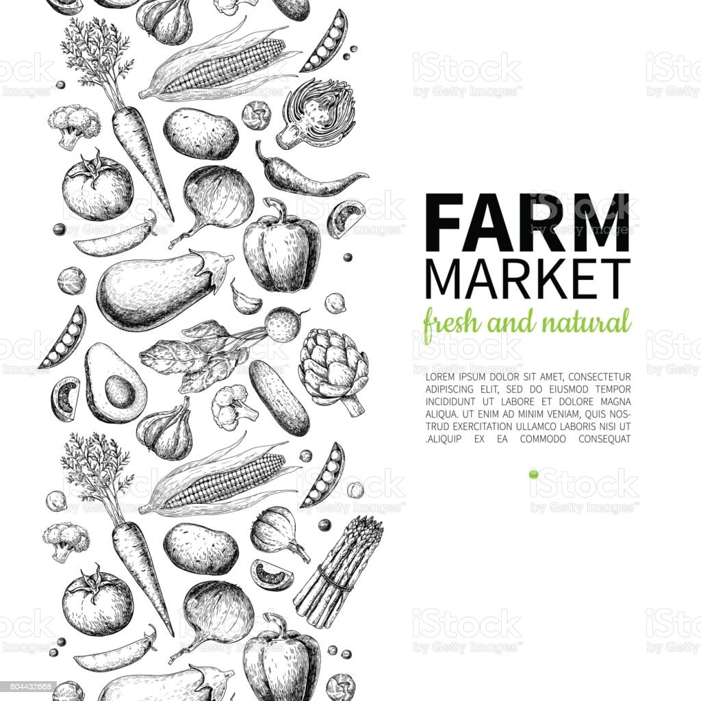 Vegetable hand drawn vintage vector frame illustration. Farm Market poster. Vegetarian set of organic products. vector art illustration