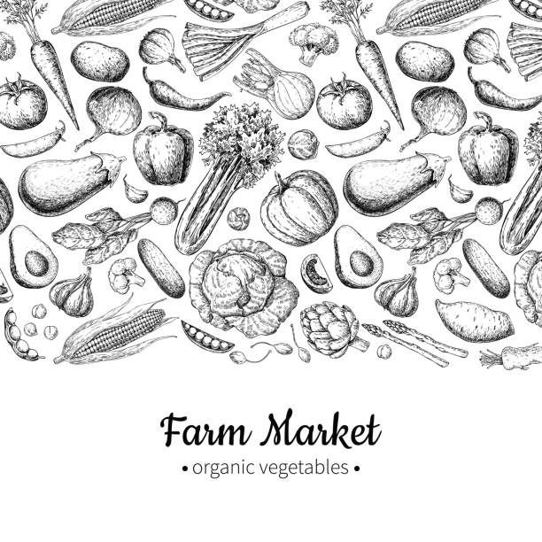 illustrazioni stock, clip art, cartoni animati e icone di tendenza di vegetable hand drawn vintage vector illustration. farm market poster. - avocado
